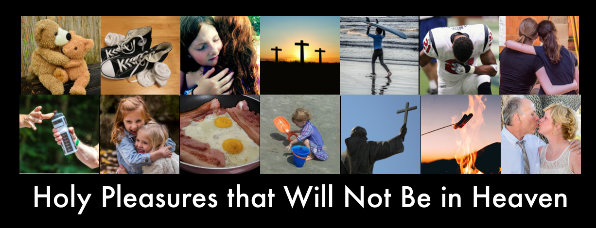 Holy Pleasures that Will Not Be in Heaven.